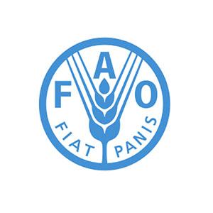 Partner FAO